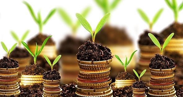 Consejos de finanzas para principiantes